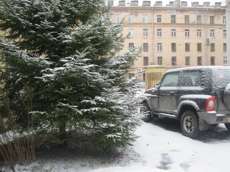 чем не зима-min